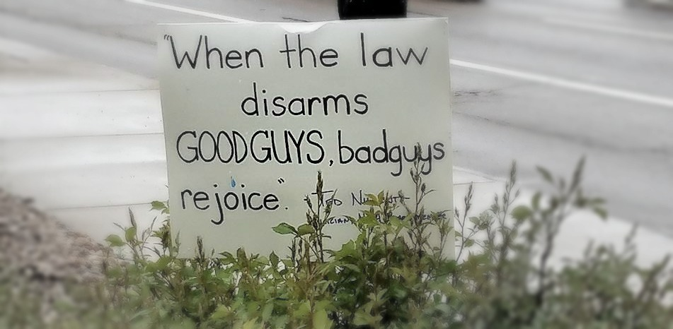 Why Common Sense Gun Laws Only Criminalize The Law Abiding : Rally for our Rights Colorado